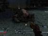 borderlands-gameplay-7