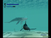 ecco-the-dolphin-gameplay7