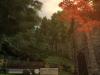 elder-scrolls-IV-oblivion-forest