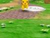 pokemon-dash-gameplay2