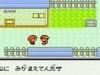 pokemon-gold-dialogue